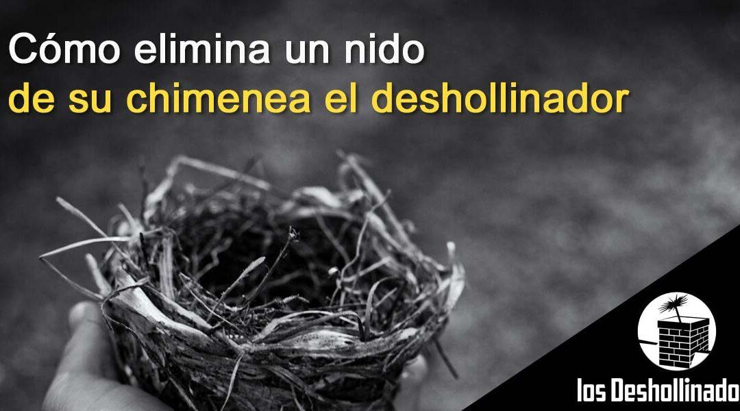 Cómo elimina un nido de su chimenea El Deshollinador