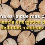 Eficiencia energética de la leña